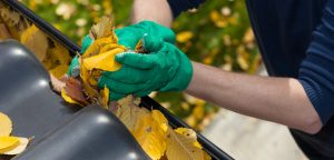 Protect Your Hands During Gutter cleaning